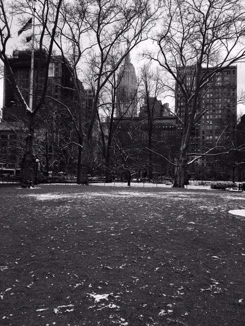 madison square park1