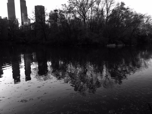 central-park-black-and-white