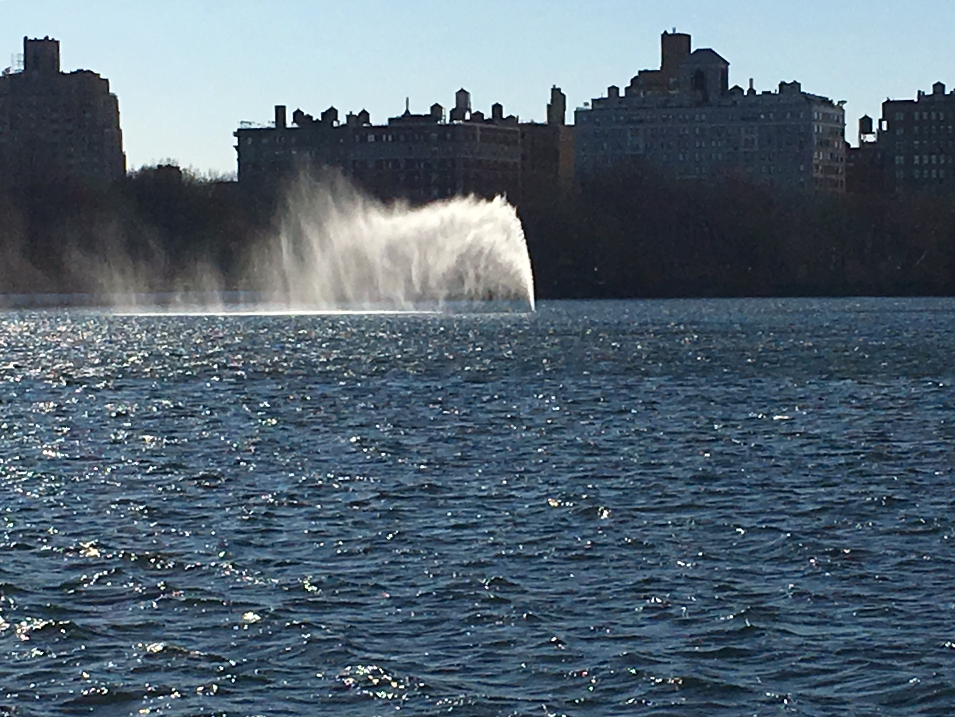 Dispatches From The Park The Wind Played With The Water Coming From The Fountain In The